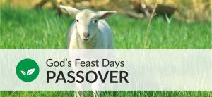 Passover Unit sm