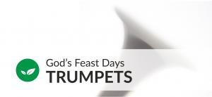 Trumpets unit sm